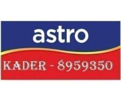 Fresh Flowers AHB00122- Purple Toned