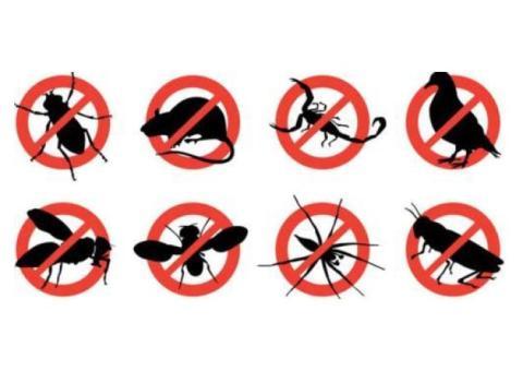 Bangalore  Banaswadi Copy paste jobs